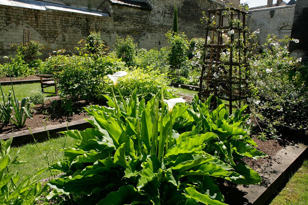 Parcs Ville Site Troyes Et Jardins De La WdxBoerC